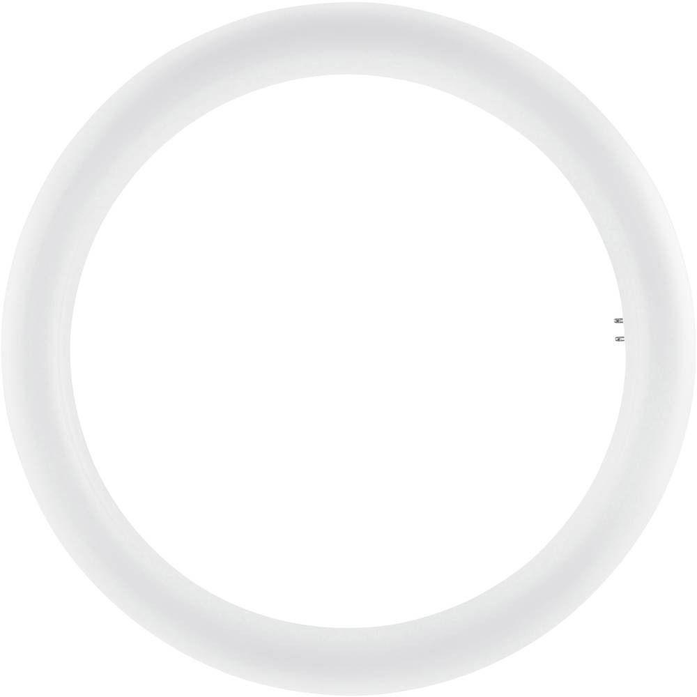 Osram SubstiTUBE T9 Circular EM MAINS G10Q 20W 865   Päivänvalo Valkoinen - Korvaa 32W
